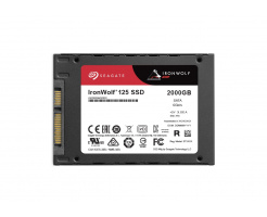 2TB Seagate IronWolf 125 SSD ZA2000NM1A002